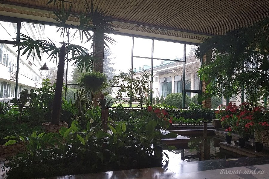 Вид на окно из зимнего сада